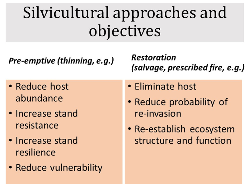 Table showing objectives to pre-emptive and restoration silviculture