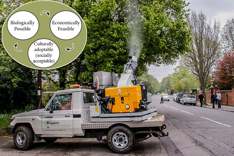 Photo of street trees being sprayed with insecticides